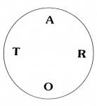 medium_tarot_en_forme_de_roue.jpg